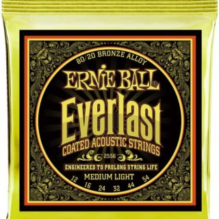 Ernieball Everlast Coated 80/20 Bronze Acoustic Guitar String